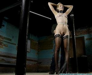 [FutileStruggles.com / Clips4Sale.com] Ariel Anderssen (Slave Position Training For Ariel Anderssen / 14.02.2020) [2020 g., BDSM, barefoot, Blondes, crotchrope, feet toes, gags, MILF, nude, Open Mouth Gag, stockings, 480p]